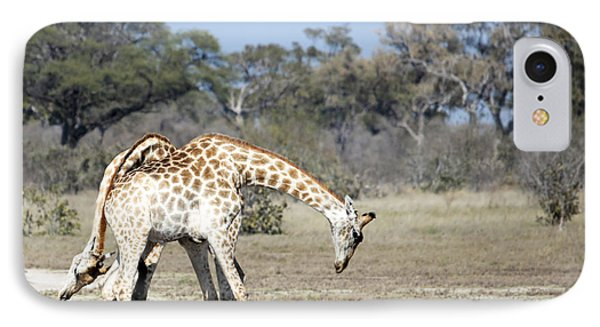 IPhone Case featuring the photograph Male Giraffes Necking by Liz Leyden