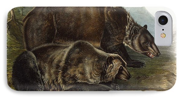 Male Grizzly Bear IPhone Case by Audubon