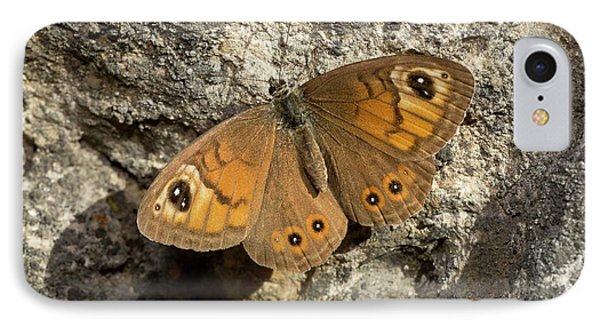 Male Large Wall Brown Butterfly IPhone Case by Bob Gibbons