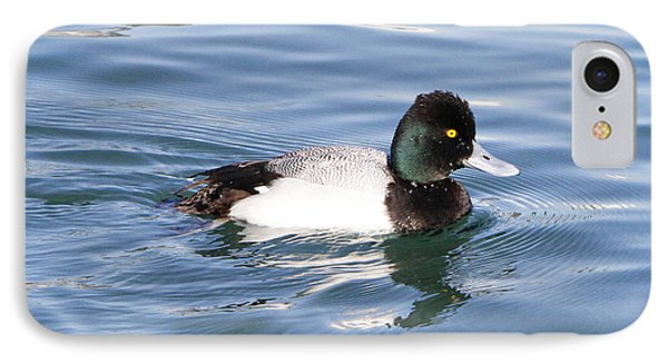 Male Lesser Scaup Phone Case by Shoal Hollingsworth