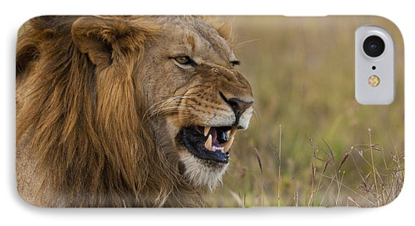 Male Lion Snarling In Ol Pejeta IPhone Case