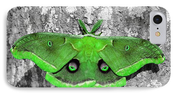 Male Moth Green Phone Case by Al Powell Photography USA