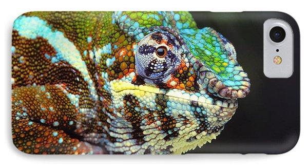 Male Panther Chameleon Furcifer Phone Case by Thomas Kitchin & Victoria Hurst