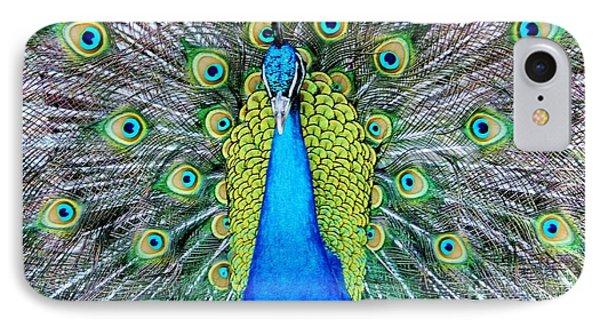 Male Peacock IPhone Case by Cynthia Guinn