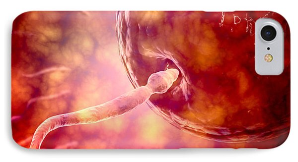 Male Reproductive Sperm Entering Phone Case by Stocktrek Images