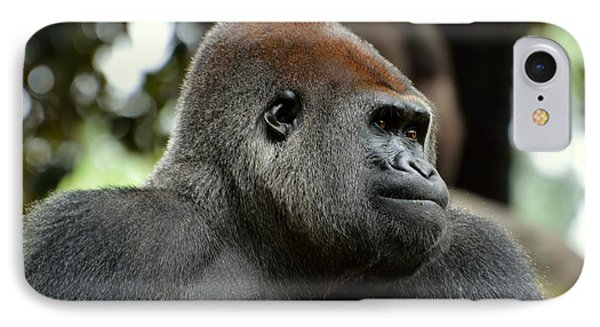 IPhone Case featuring the photograph Male Silverback by Lisa L Silva