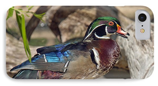 Male Wood Duck Dwf029 IPhone Case by Gerry Gantt