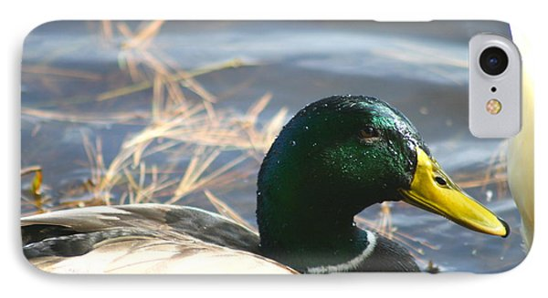IPhone Case featuring the photograph Mallard Anas Platyrhynchos by Neal Eslinger