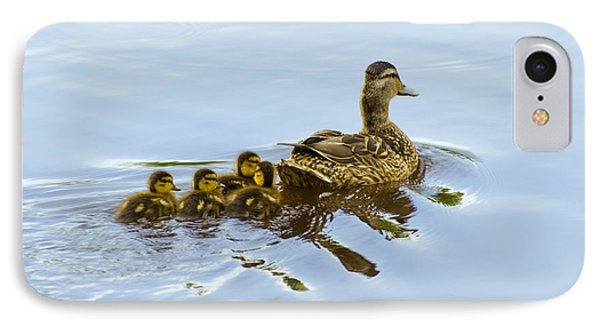 Mallard And Chicks  IPhone Case by Chris Flees