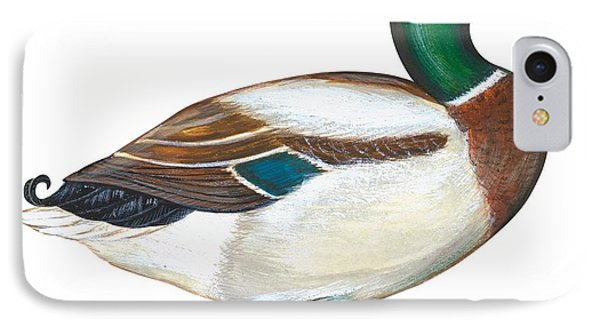 Mallard Duck IPhone Case by Anonymous