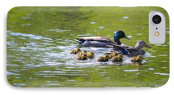 Mallard Duck Family IPhone Case by Diane Diederich
