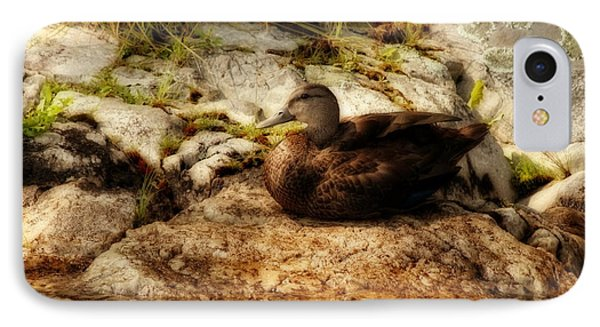 IPhone Case featuring the photograph Mallard Duck Onaping by Marjorie Imbeau