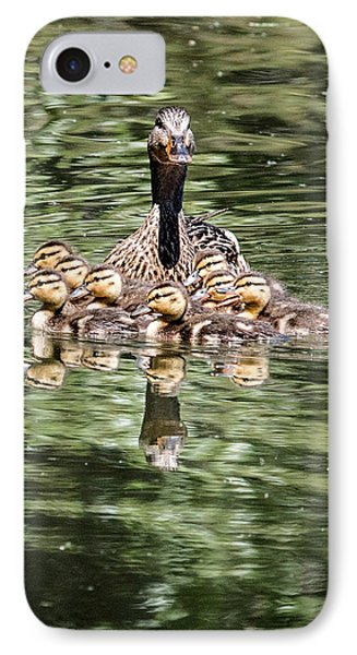 Mallard Hen With Ducklings And Reflection IPhone Case