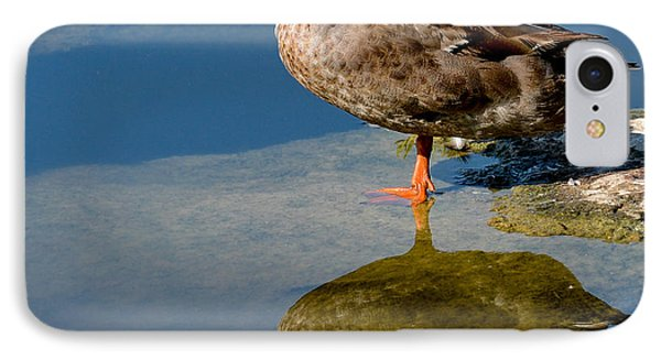 Mallard Reflection IPhone Case