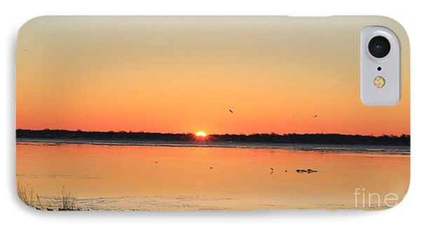 Mallards At Sunrise IPhone Case by David Jackson
