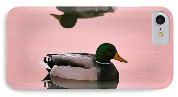 Mallards In Pink IPhone Case