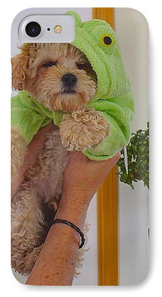 IPhone Case featuring the photograph Malti-poo Frog A True Mongrel by Brenda Pressnall
