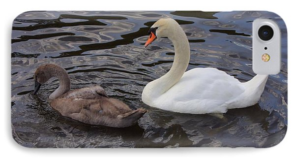 Mama And Baby Swan IPhone Case by Carol Groenen