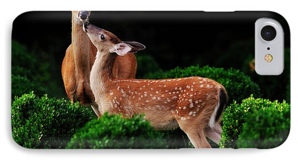 Mama And Her Fawn Phone Case by Angel Cher