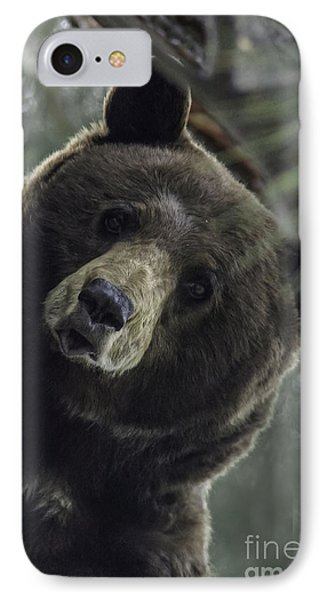 Mama Bear IPhone Case by Mitch Shindelbower