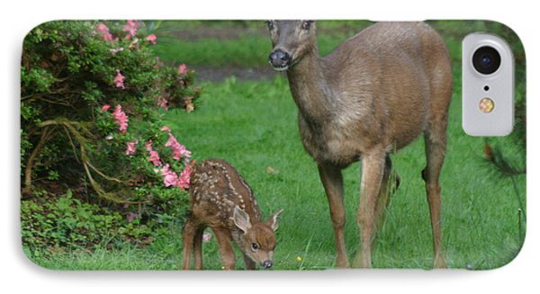 Mama Deer And Baby Bambi IPhone Case by Kym Backland