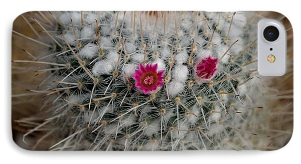 IPhone Case featuring the photograph Mammillaria Geminispina by Scott Lyons