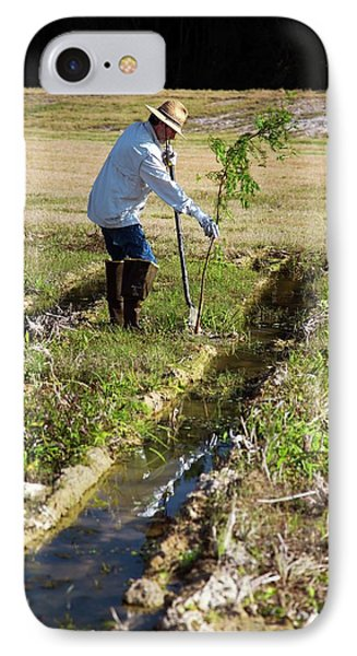 Man Planting A Cypress Tree IPhone Case by Jim West