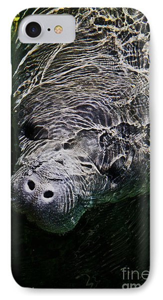 IPhone Case featuring the photograph Manatee 01 by Melissa Sherbon