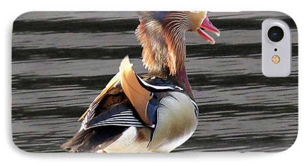 Mandarin Duck Phone Case by Donna Brown