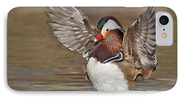 Mandarin Duck Flapping Away Phone Case by Susan Candelario