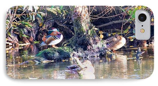 Mandarin Duck Phone Case by Leif Sohlman
