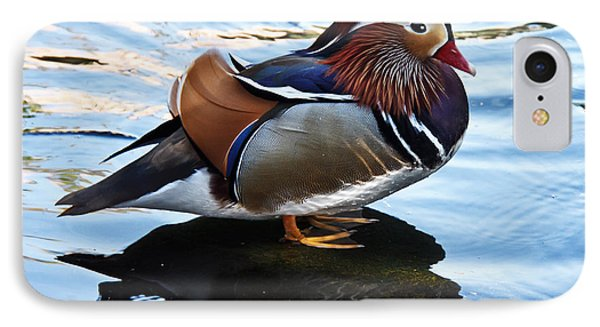 Mandarin Duck Phone Case by Robert Bales