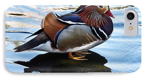 Mandarin Duck IPhone Case by Robert Bales