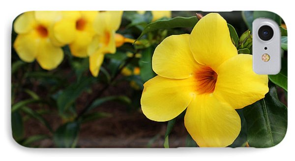 Mandevilla IPhone Case by Judy Vincent