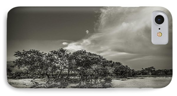 Mangrove At Low Tide IPhone Case