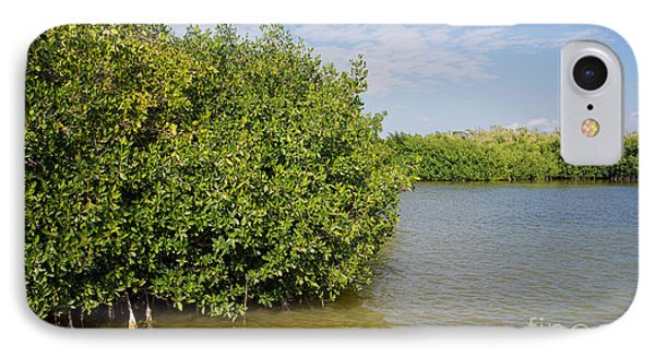 Mangrove Forest IPhone Case by Carol Ailles
