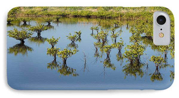 Mangrove Nursery IPhone Case