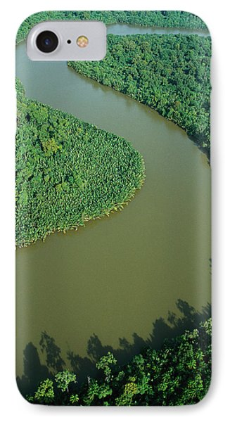Mangrove Rhizophora Sp In Mahakam Delta Phone Case by Cyril Ruoso