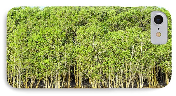 Mangrove Trees IPhone Case by Peter Chadwick