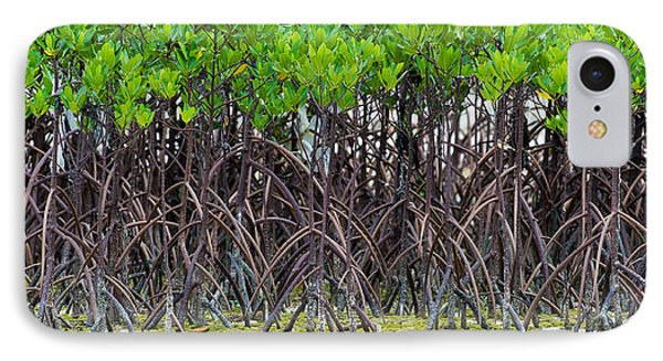 Mangroves IPhone Case by Avian Resources