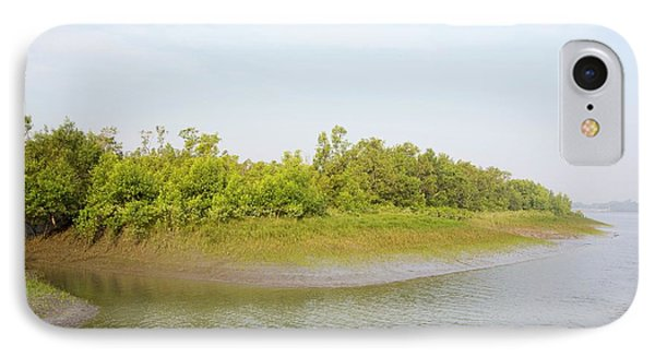 Mangroves In The Sunderbans IPhone Case by Ashley Cooper