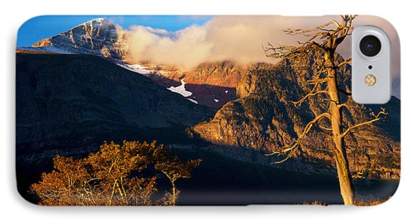 IPhone Case featuring the photograph Many Glacier Tree by Aaron Whittemore