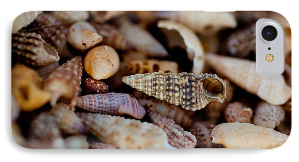 Many Shells IPhone Case by Carole Hinding
