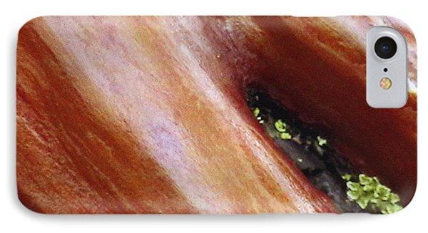 Manzanita Bark IPhone Case by Patrick Morgan