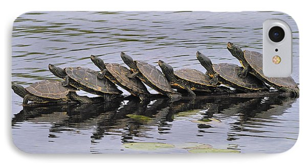 Map Turtles Phone Case by Tony Beck