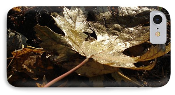 IPhone Case featuring the photograph Maple Leaf by J L Zarek