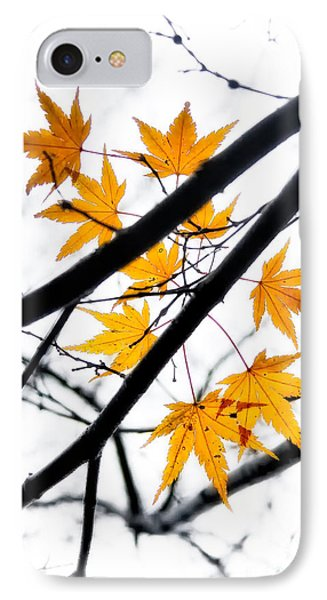 IPhone Case featuring the photograph Maple Leaves by Jonathan Nguyen