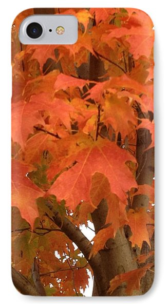 Maple Orange IPhone Case