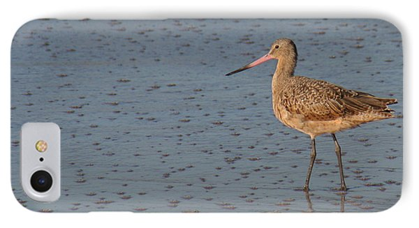 Marbled Gotwit At Low Tide IPhone Case
