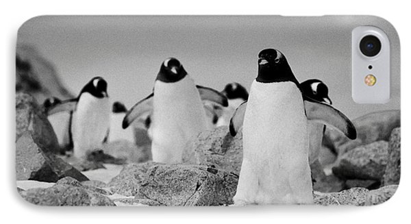 March Of Gentoo Penguins Pygoscelis Papua At Neko Harbour Continent Of Antarctica IPhone Case